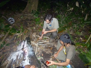 Cooking what we find in the jungle photo