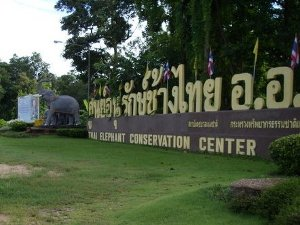 Entrance to Thai Elephant Conservation Center photo